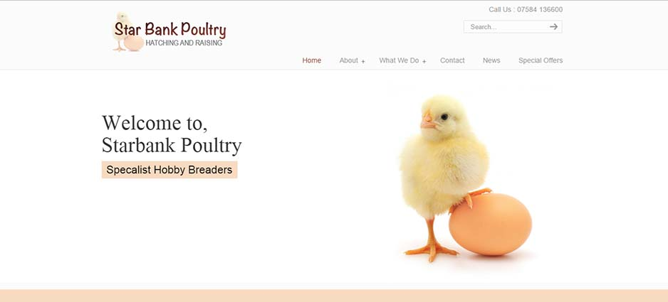Starbank Poultry